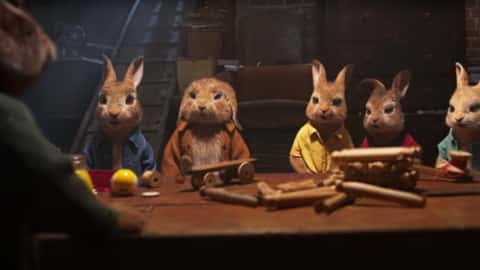 Peter Rabbit 2: The Runaway(2021)